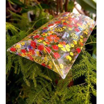 Clear Floral PET Pillow Box
